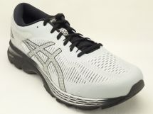アシックス GEL-KAYANO25 【EW】 1011A023